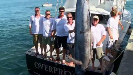 News video: Bermuda Billfish Blast 2013
