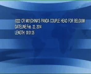 News video: (0222 CR M01)CHINAS PANDA COUPLE HEAD FOR BELGIUM